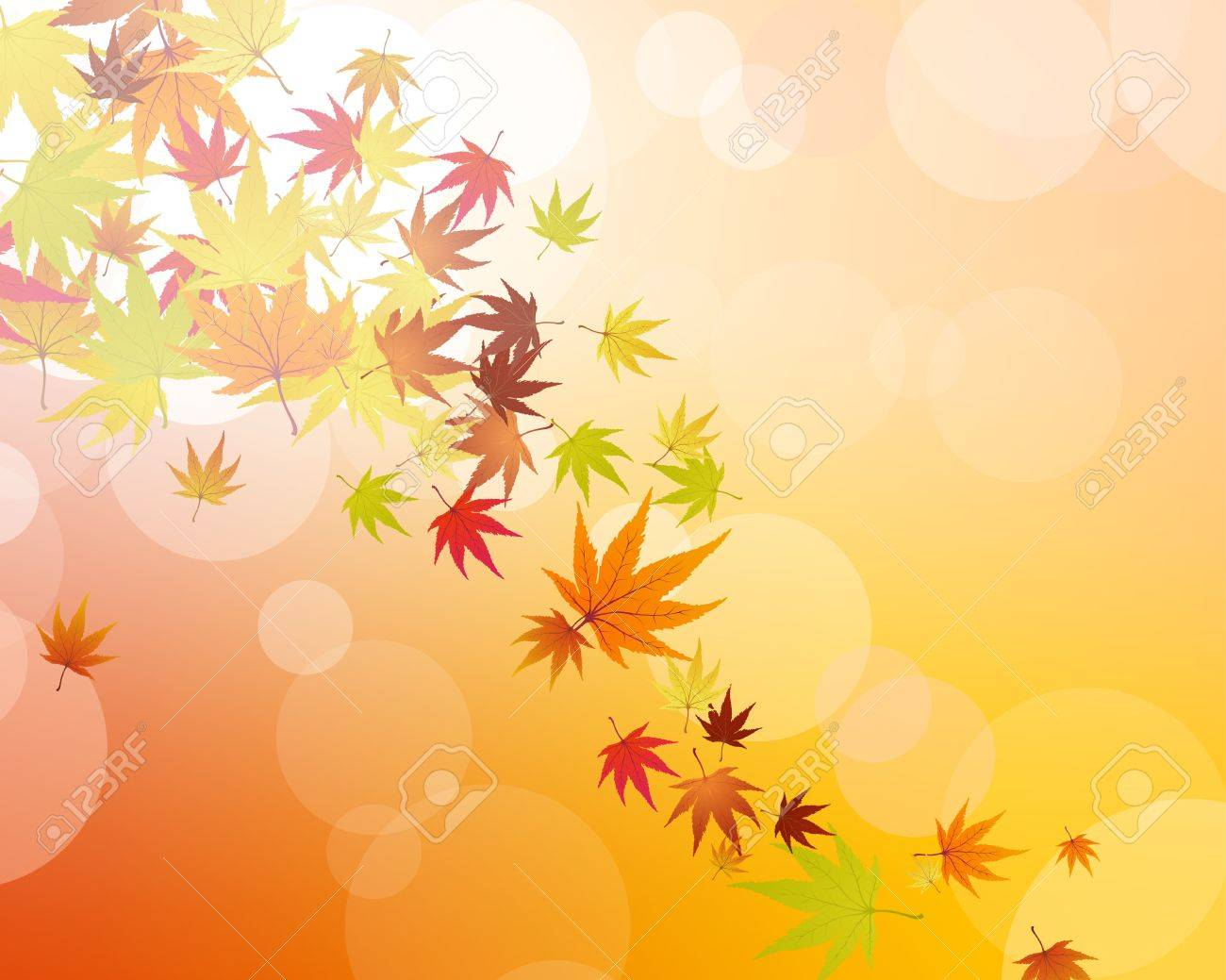Pattern of autumn  maples leaves. Vector illustration. Stock Vector - 10367849