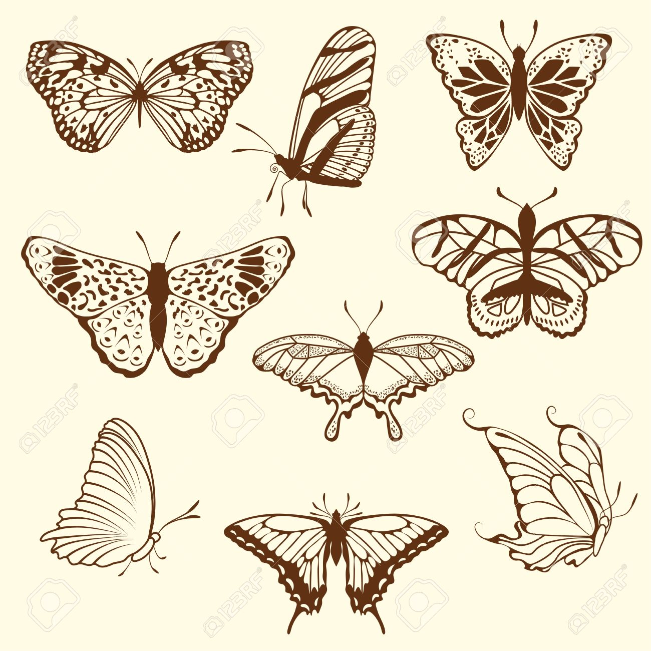 Set of different sketch butterfly. illustration for design use. Stock Vector - 10960218