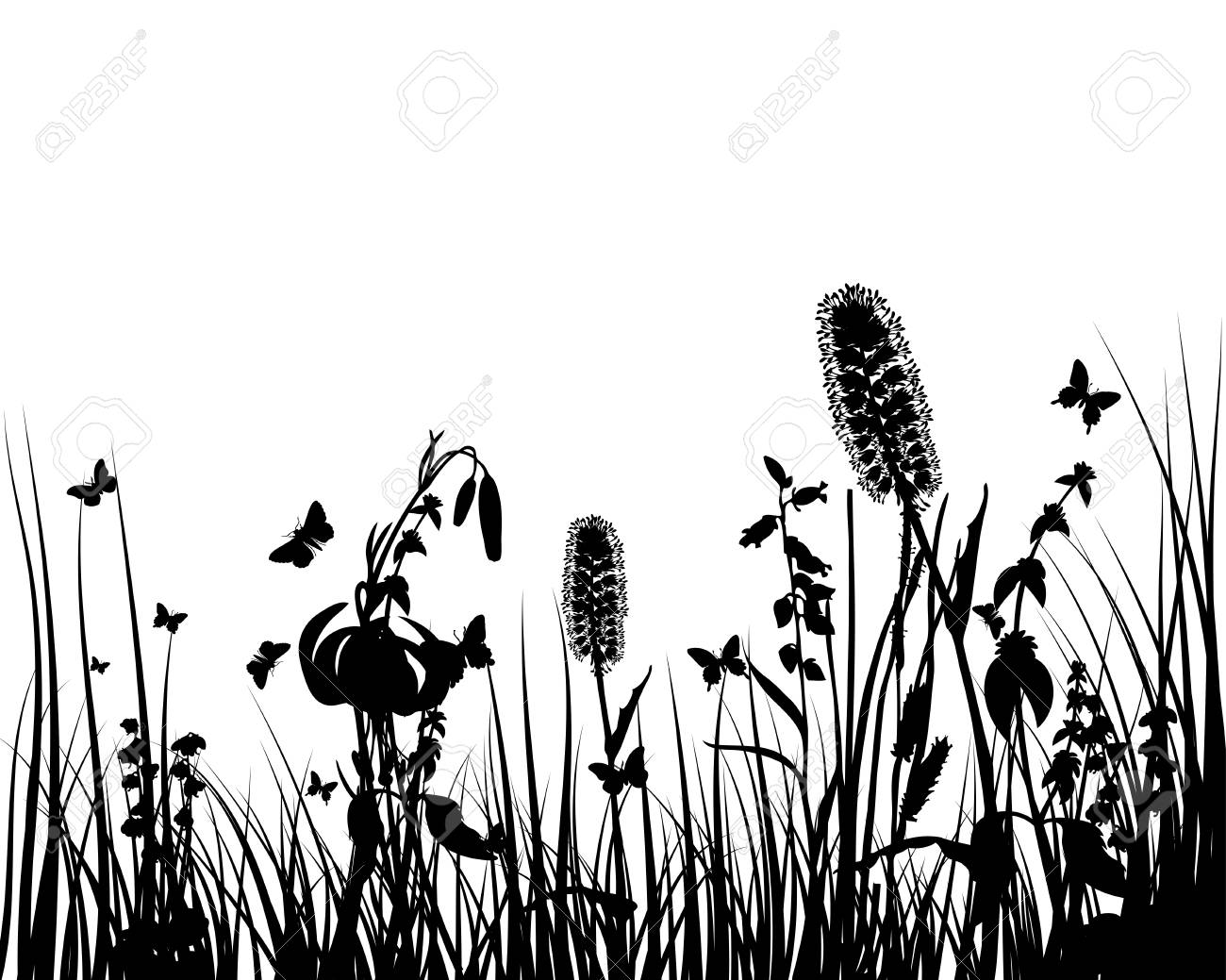 Vector grass silhouettes background. All objects are separated. Stock Vector - 12493051