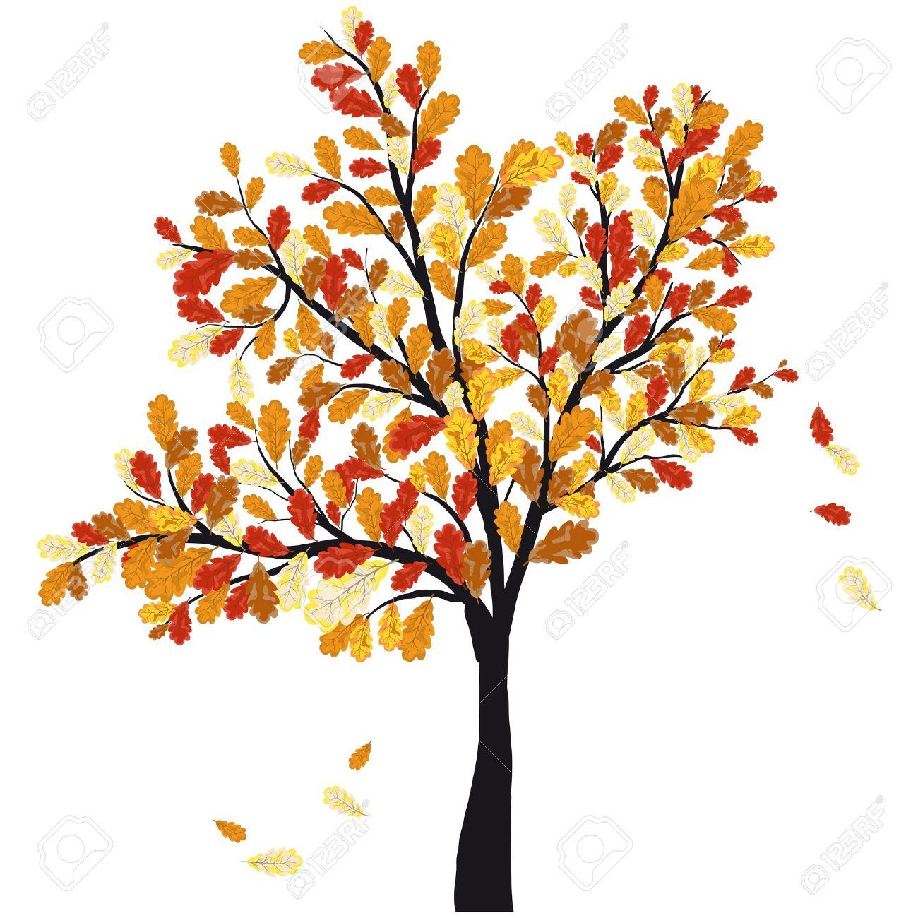 Autumn oak tree with falling Fall Tree Illustration