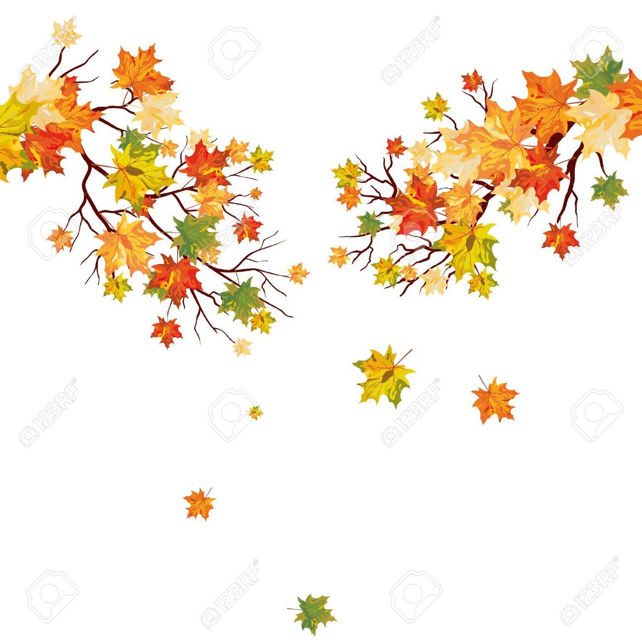 落ち葉と秋のカエデの木イラストのイラスト素材ベクタ Image