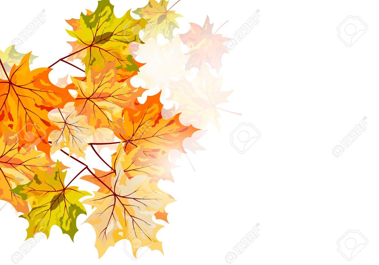 秋のカエデの葉の背景。透明 eps10 ベクトル イラスト。 ロイヤリティ
