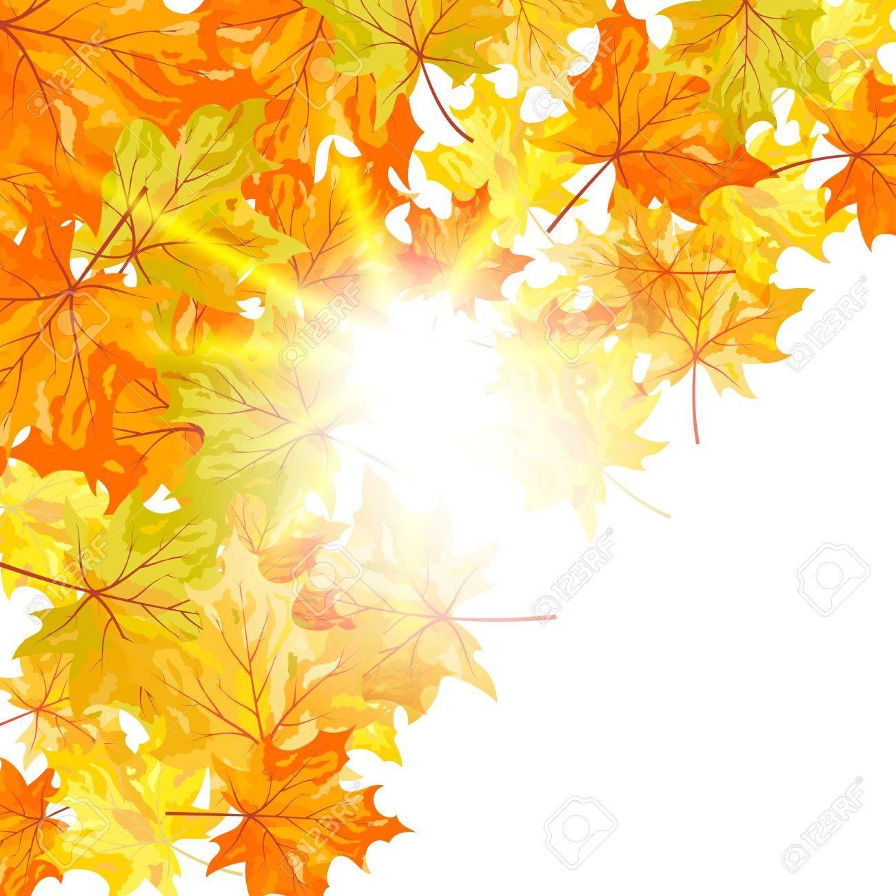 秋のカエデの葉の背景。透明なイラスト ロイヤリティフリークリップ