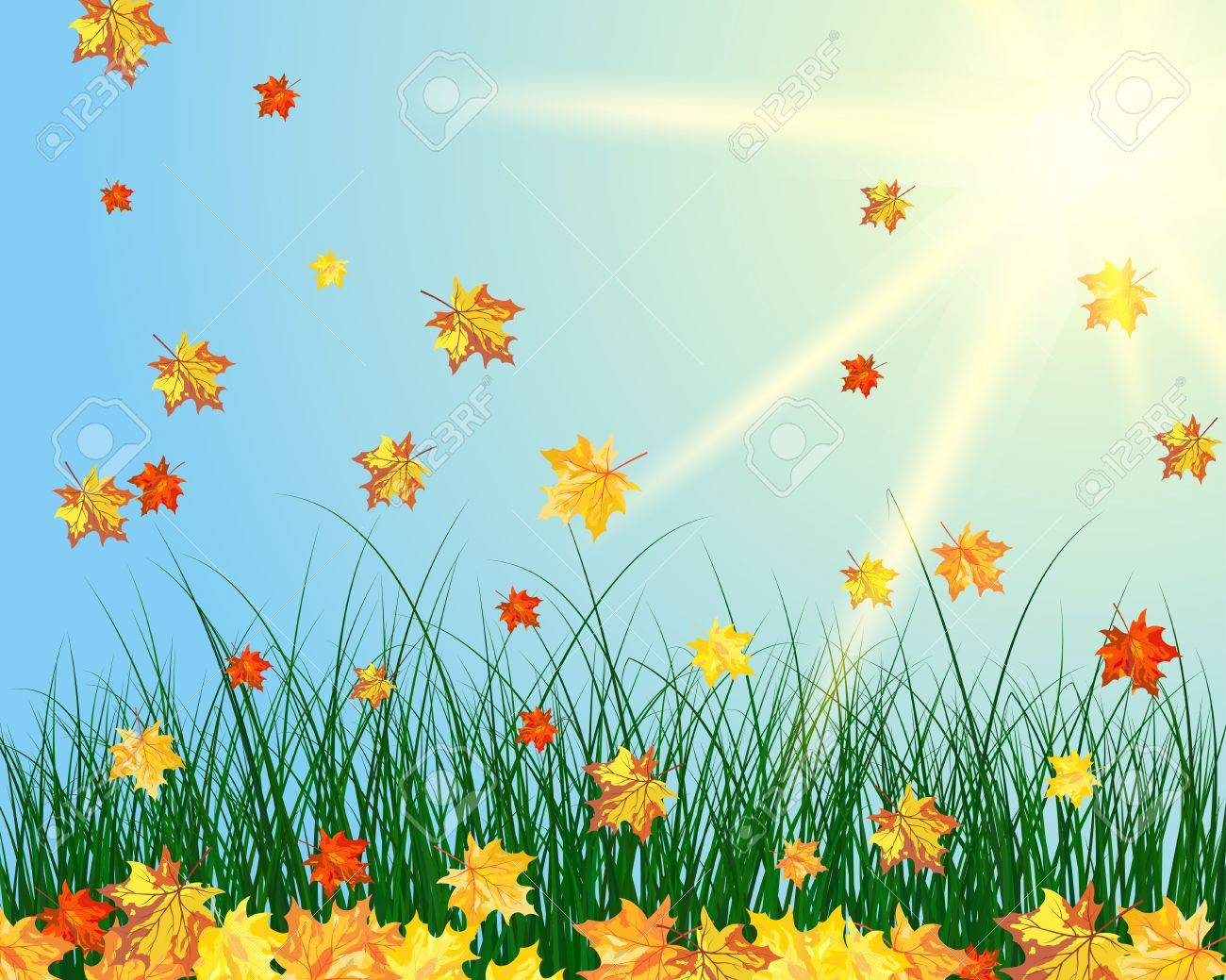 Meadow color background with butterfly and sun. Stock Vector - 15417953