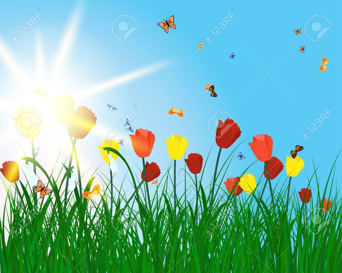 Meadow Color Background With Butterfly And Sun All Objects Are All Backgrounds Color