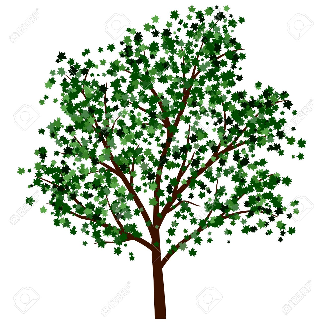 Summer tree with green leaves. EPS 10 vector illustration. Stock Vector - 19802305