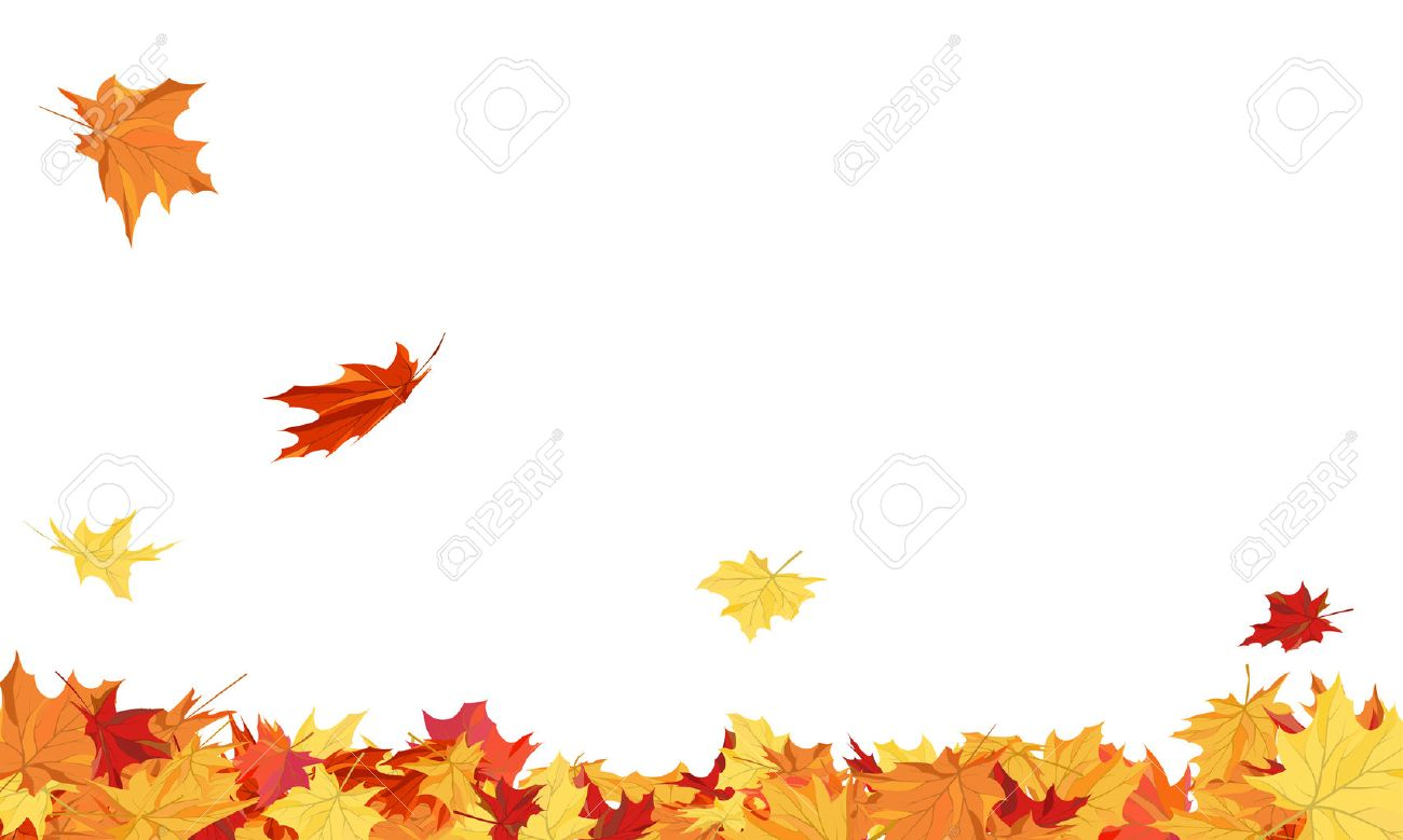 Autumn copy-space frame with maple leaves - 43156572