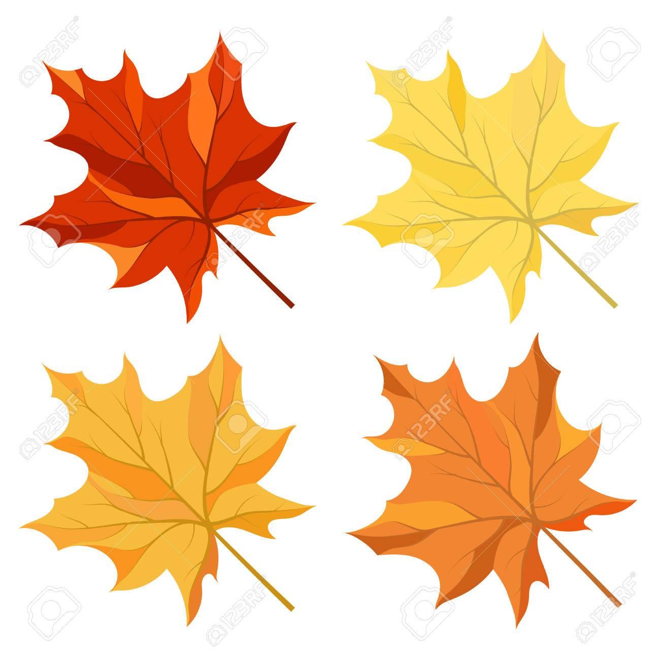 Autumn color maple leaves set - 43156728