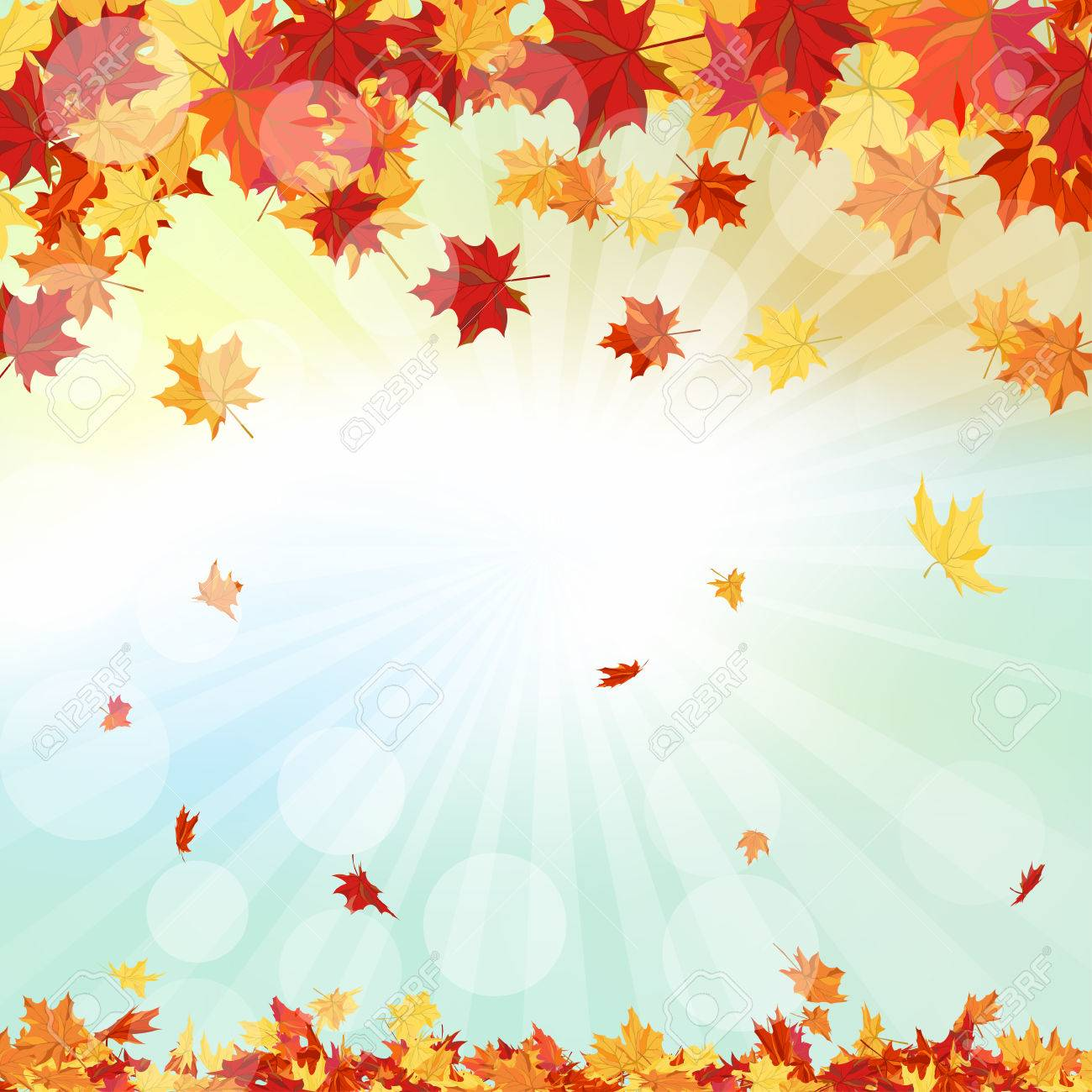 Autumn Frame With Falling Maple Leaves on Sky Background - 44064239