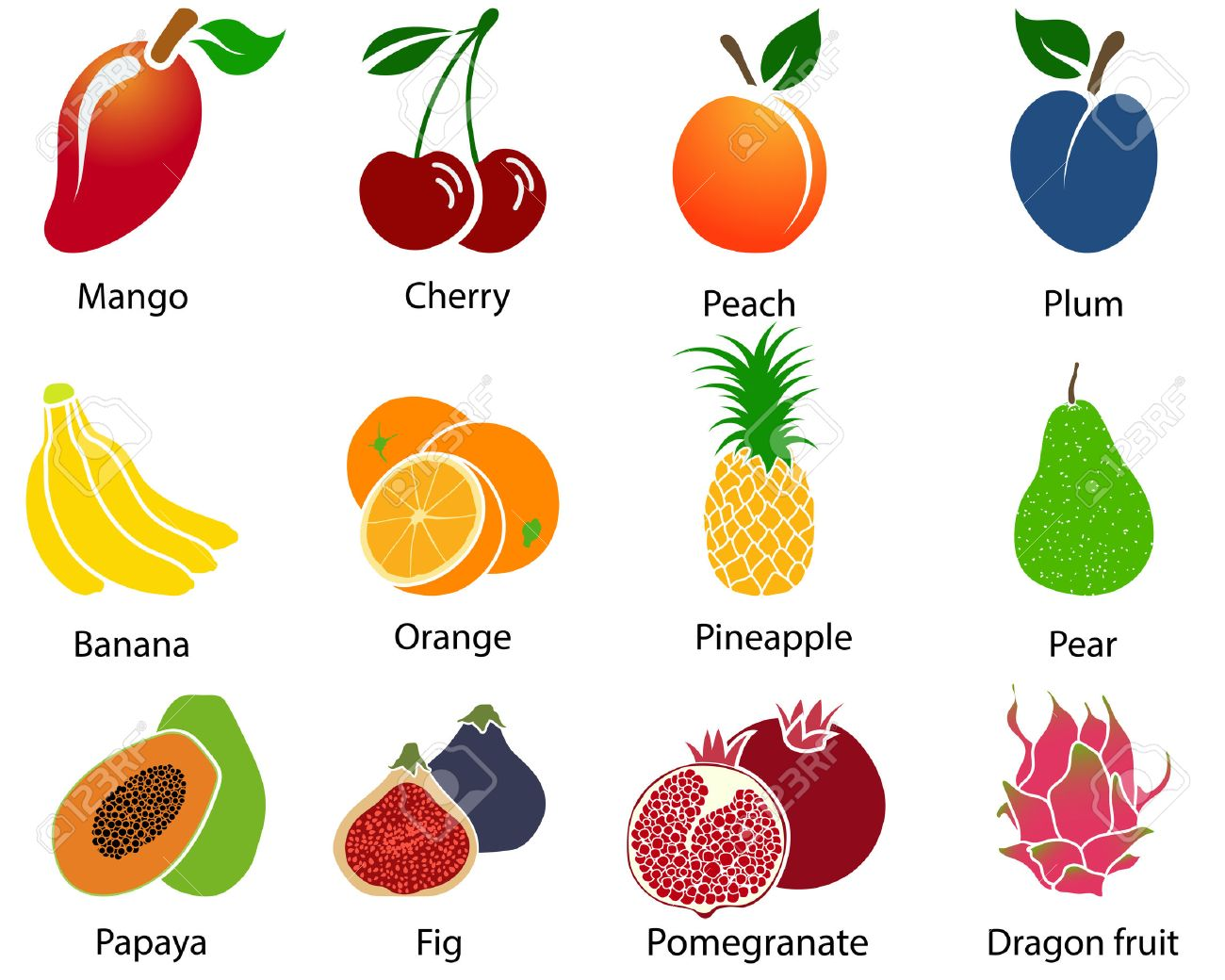 Set of cute fruit icons with title over white background. Vector illustration. - 45889916