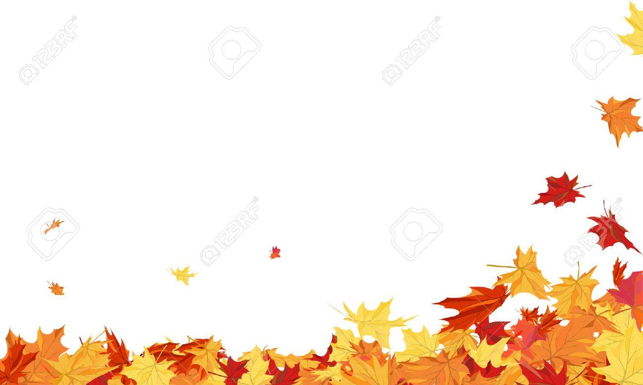 Herbst-Rahmen Mit Blasen Ahorn-Blätter über Weißem Hintergrund ...