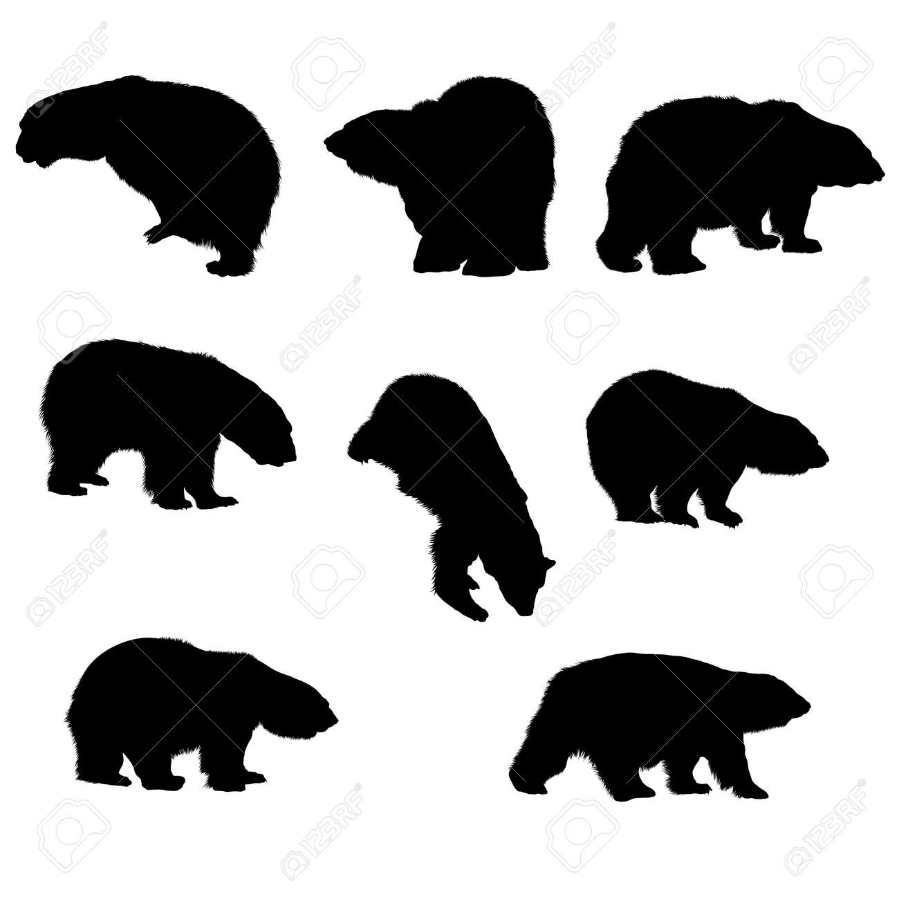 8 bear silhouettes. Smooth and Clean Lines. High detailed bear silhouettes. Vector Illustration. - 166873258