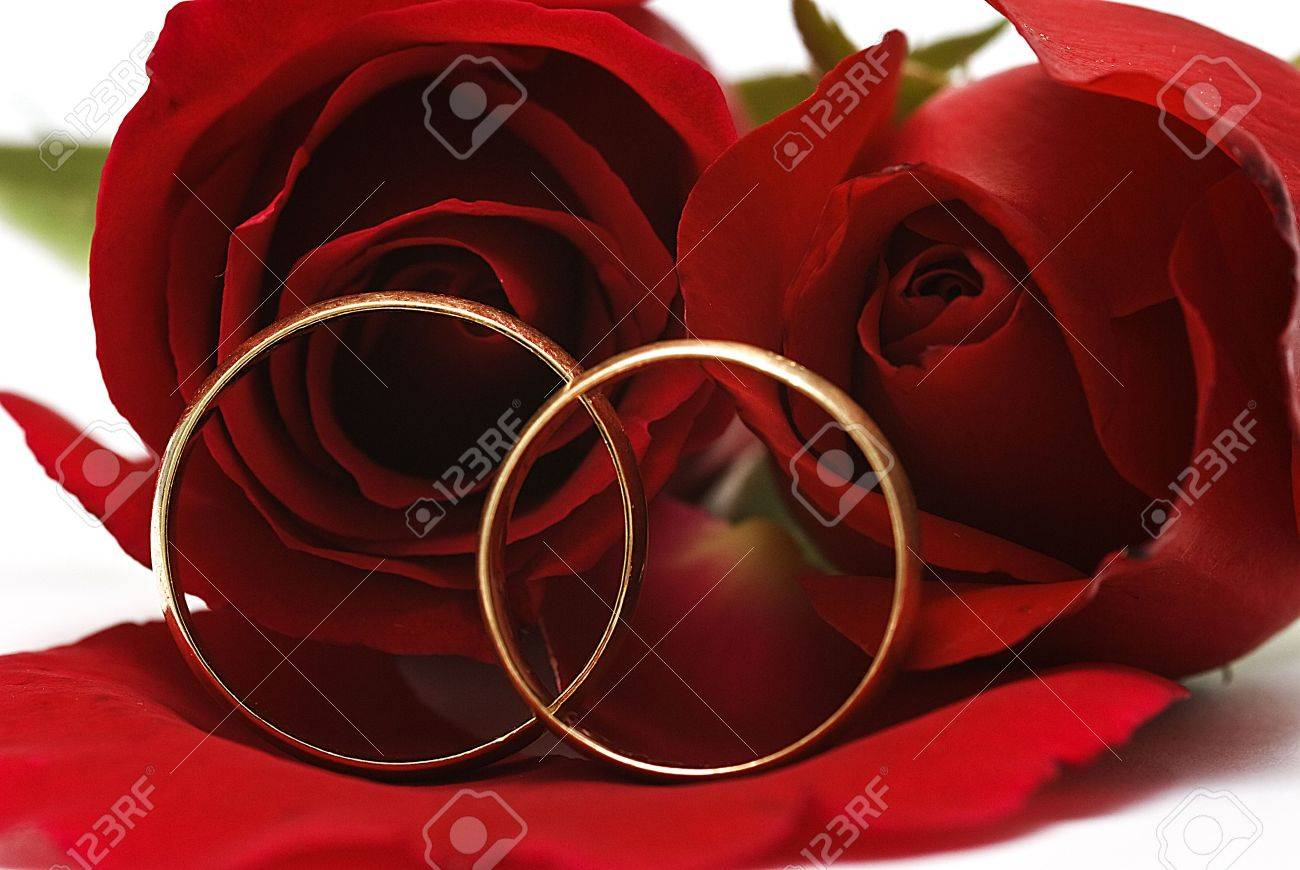 Golden rings and two red roses. Stock Photo - 6291879