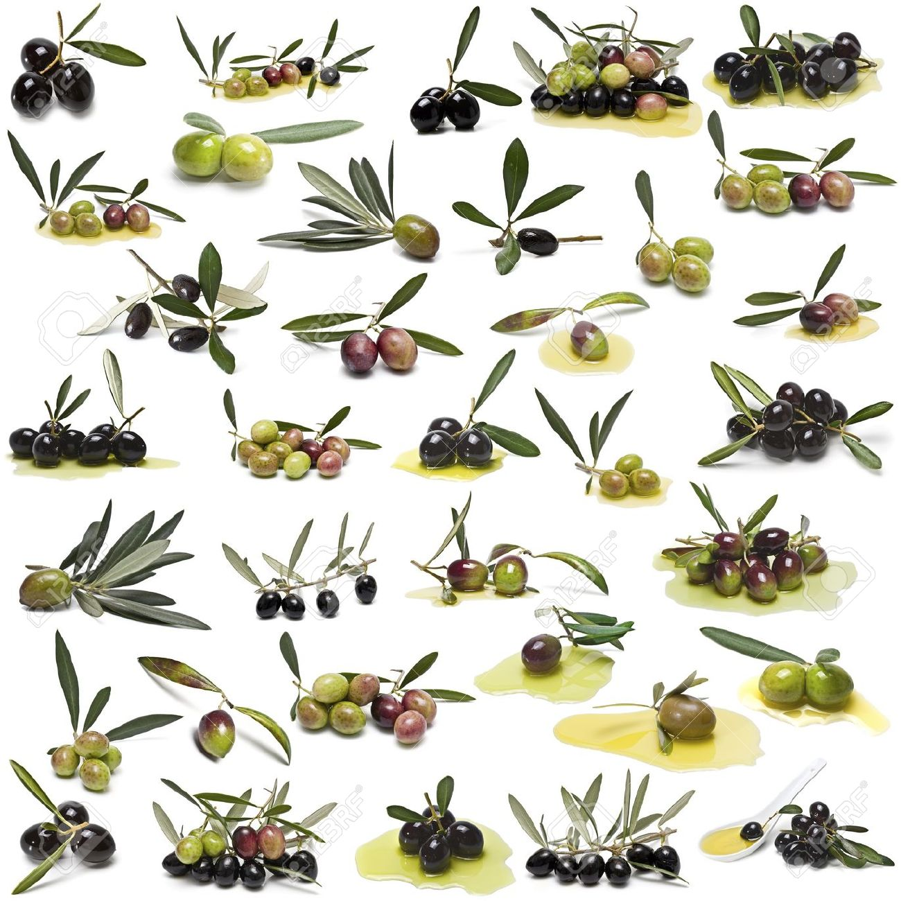 A large collection of photos of different varieties of olives isolated on white background. Stock Photo - 11597991