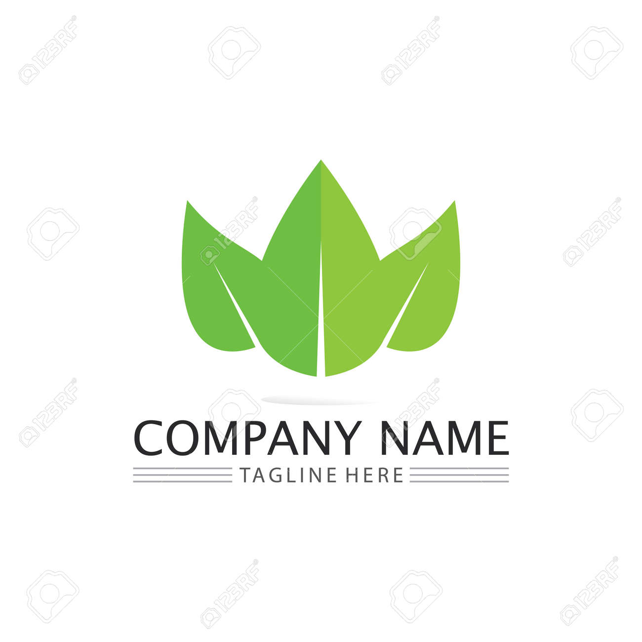 Tree leaf vector and green logo design friendly concept - 169858443