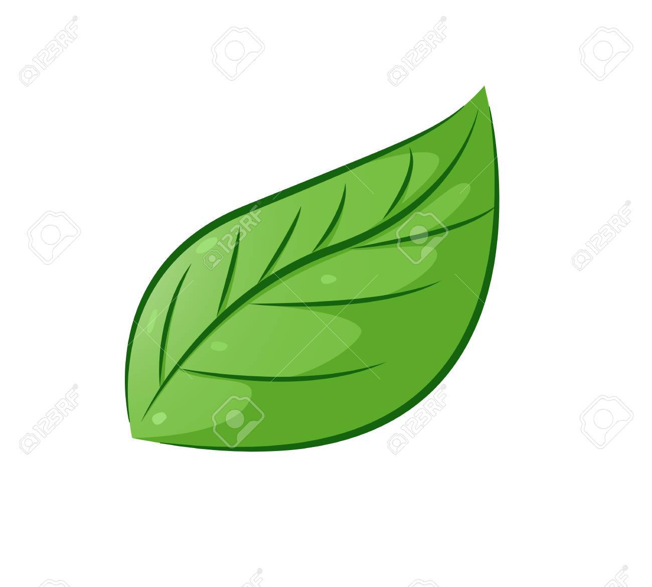 Aesthetic Leaf Royalty Free Cliparts Vectors And Stock Illustration Image 68363573