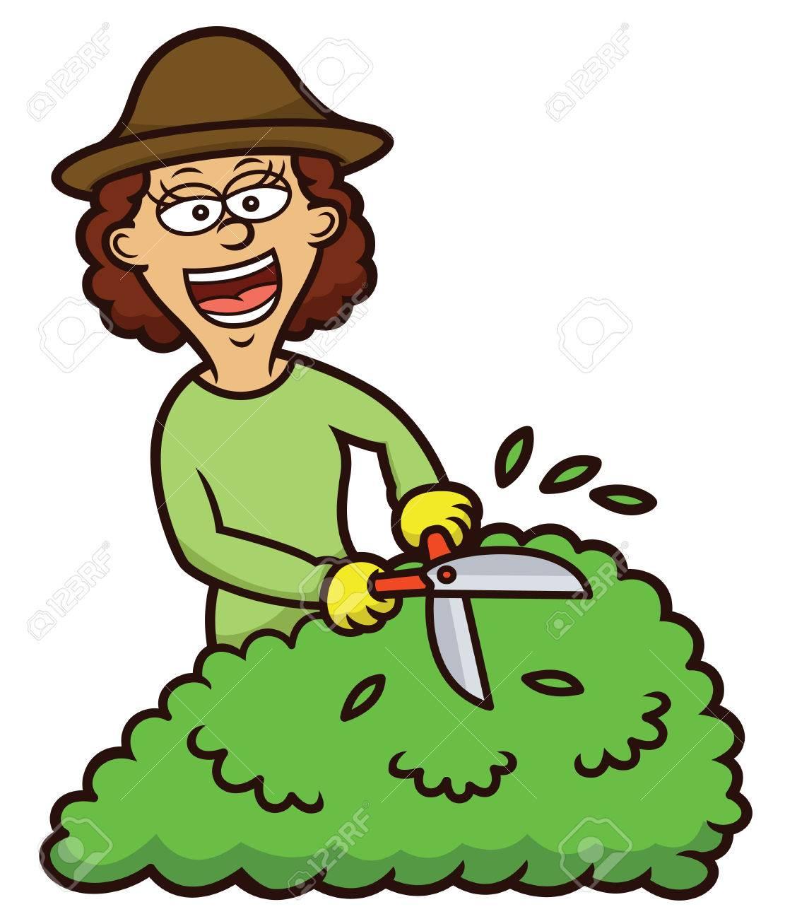 Woman Gardening Cartoon Illustration Royalty Free Cliparts Vectors And Stock Illustration Image 68544341