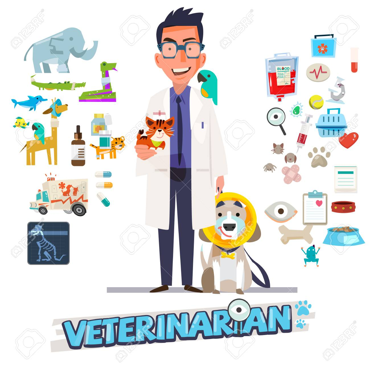 Veterinarian. Character design with icon set, zoological medicine - vector illustration - 88525622