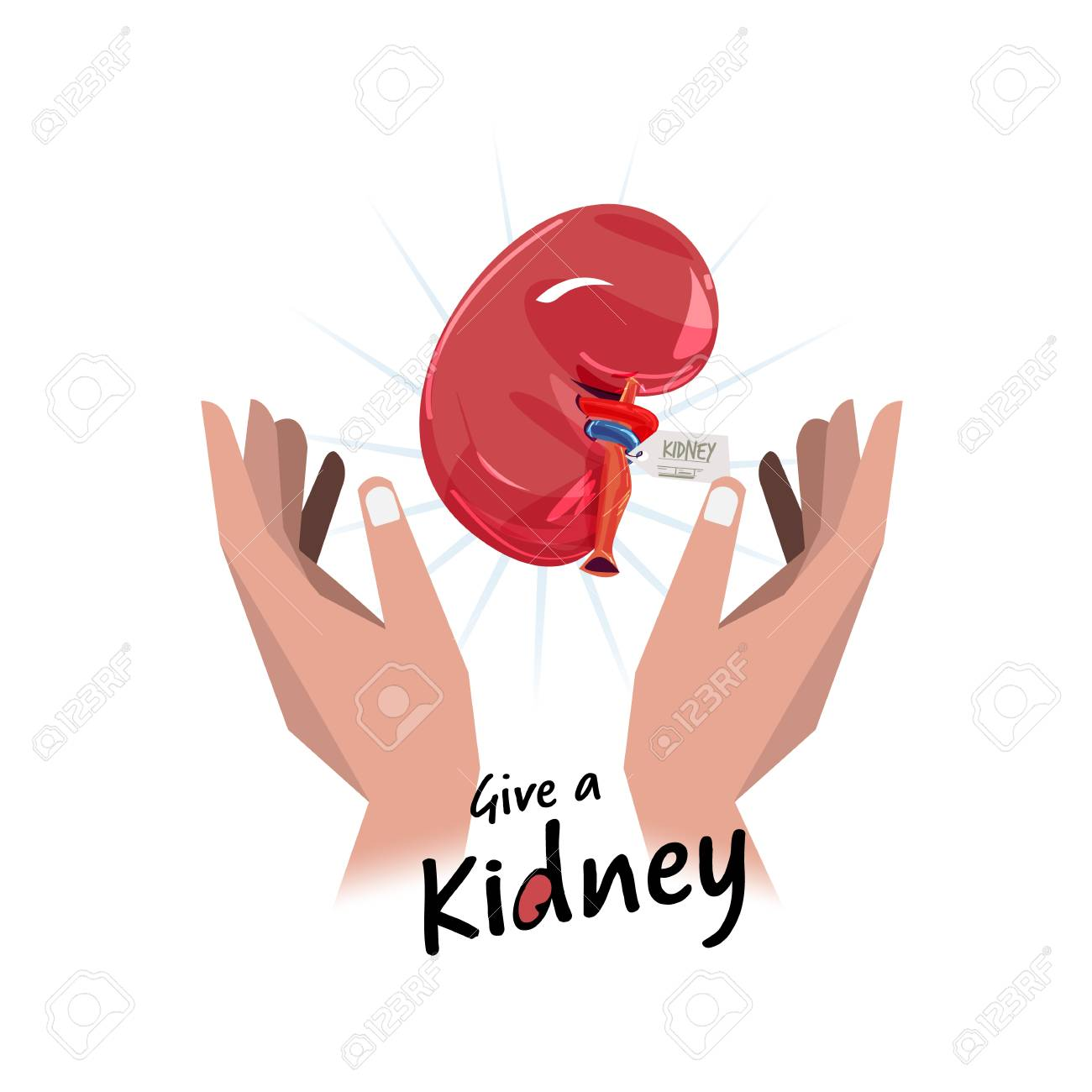 Hand with kidney. Hope for organ donation concept - vector illustration - 100829000