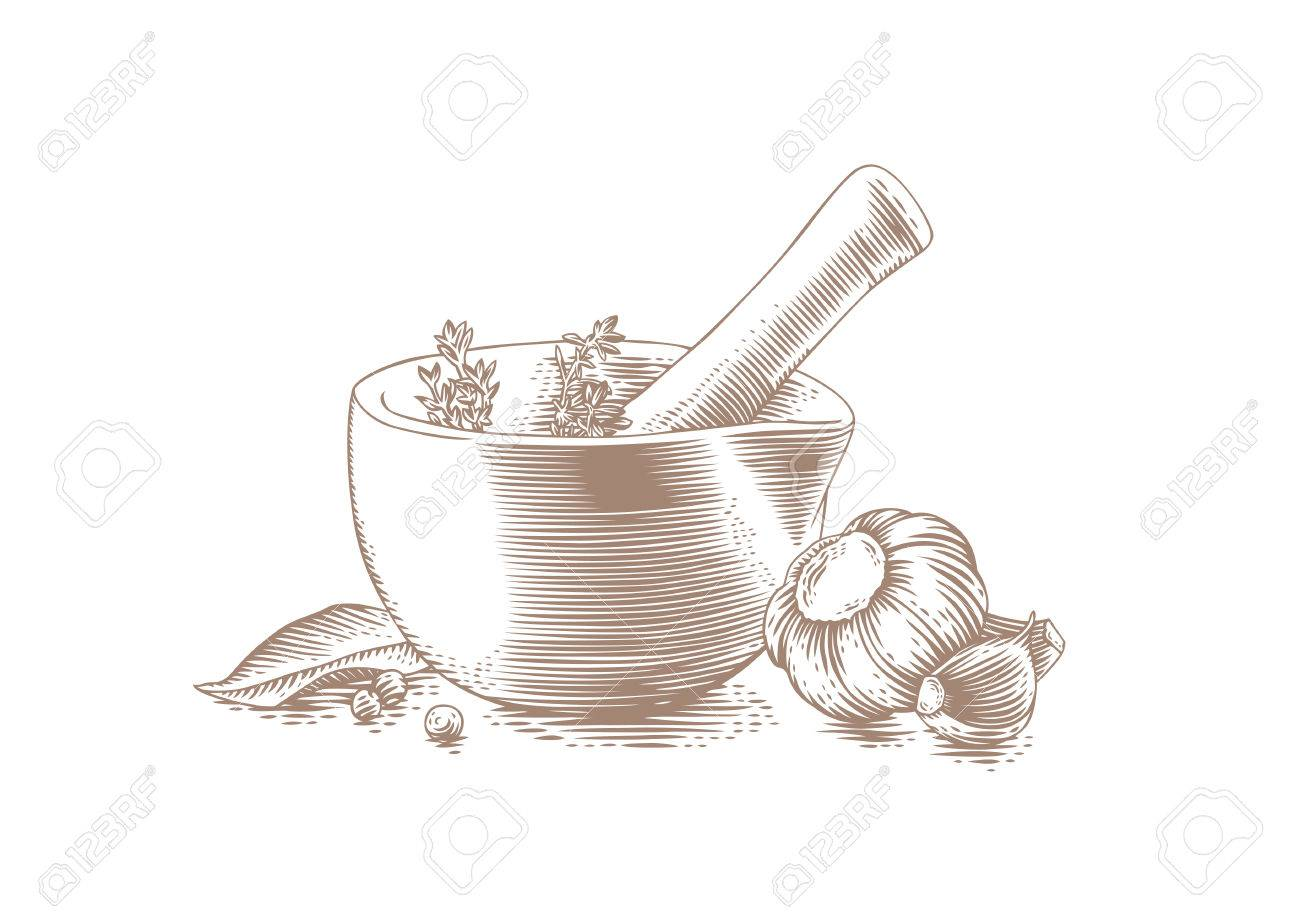 Drawing Of Mortar Bowl With Pestle, Spice, Herbs And Garlic Clip ... for Mortar And Pestle Drawing  584dqh