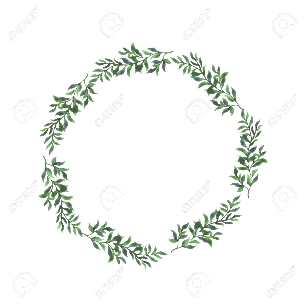 Abstract Green Leaf Laurel On White Background Design For Wedding