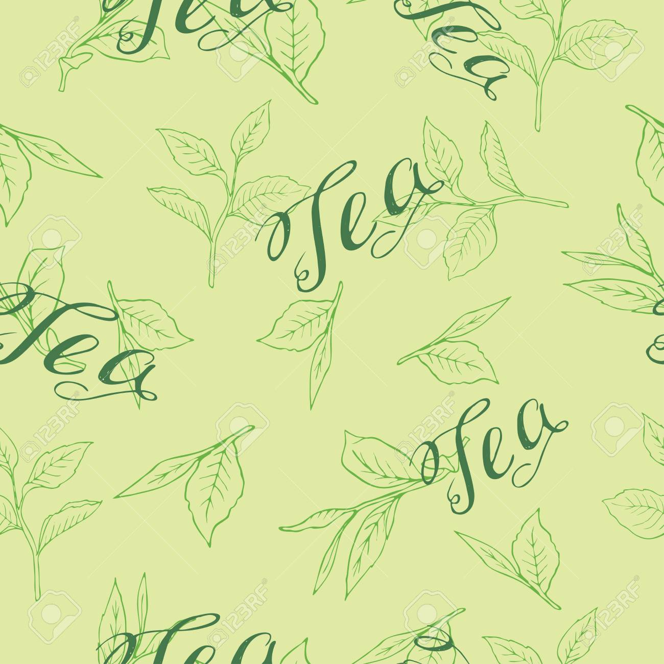 Seamless pattern with tea leaves on pastel green background. Hand lettering. Hand drawn vector illustration. - 104629151