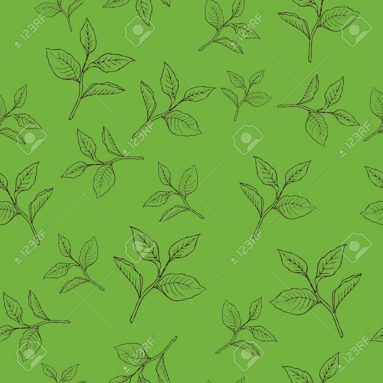 Seamless pattern with tea leaves on green background. Hand drawn vector illustration. - 104628135