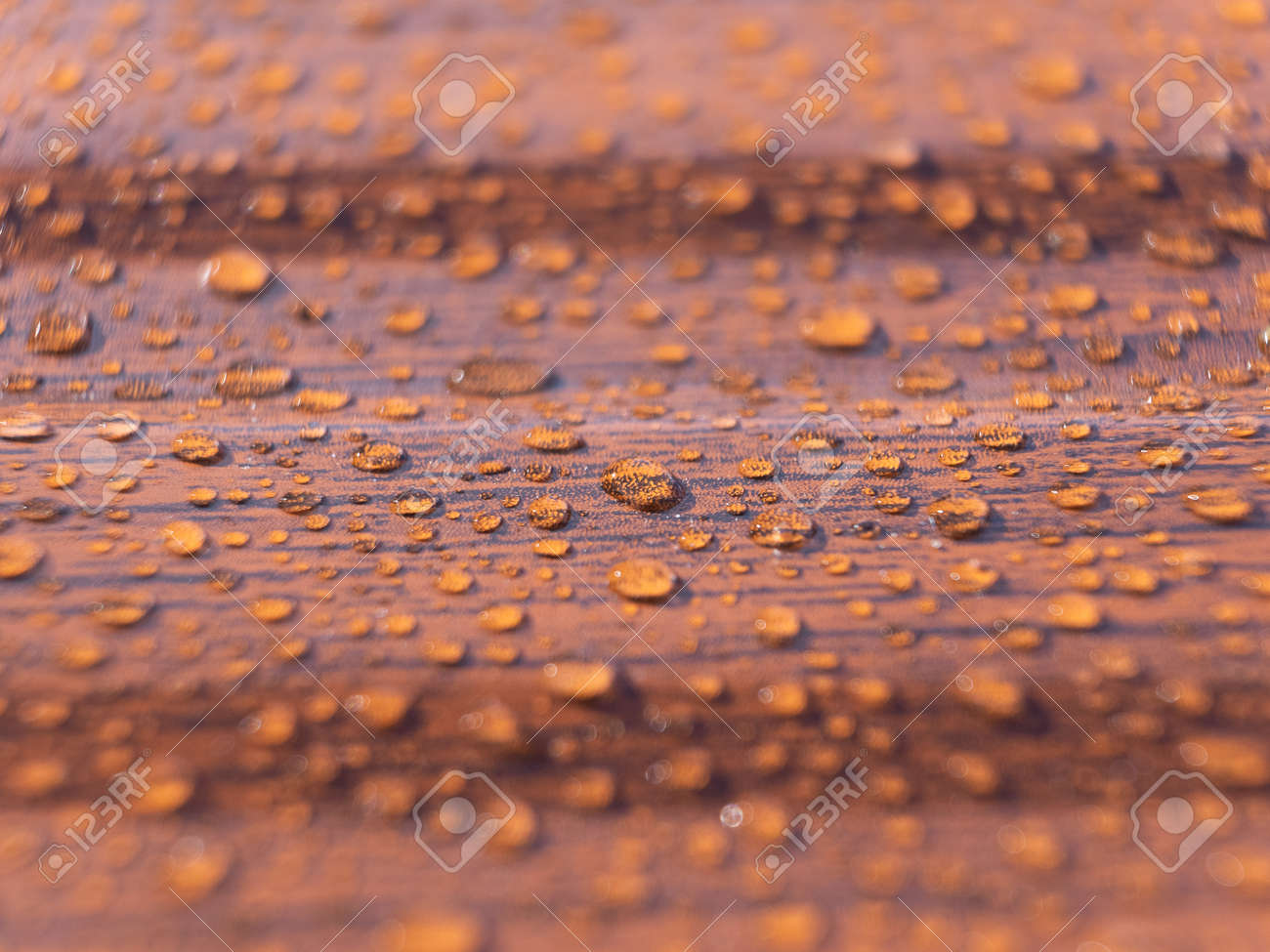 Raindrops on the metal profile sheet. Brown profiled metal sheet with dew drops. - 170713338