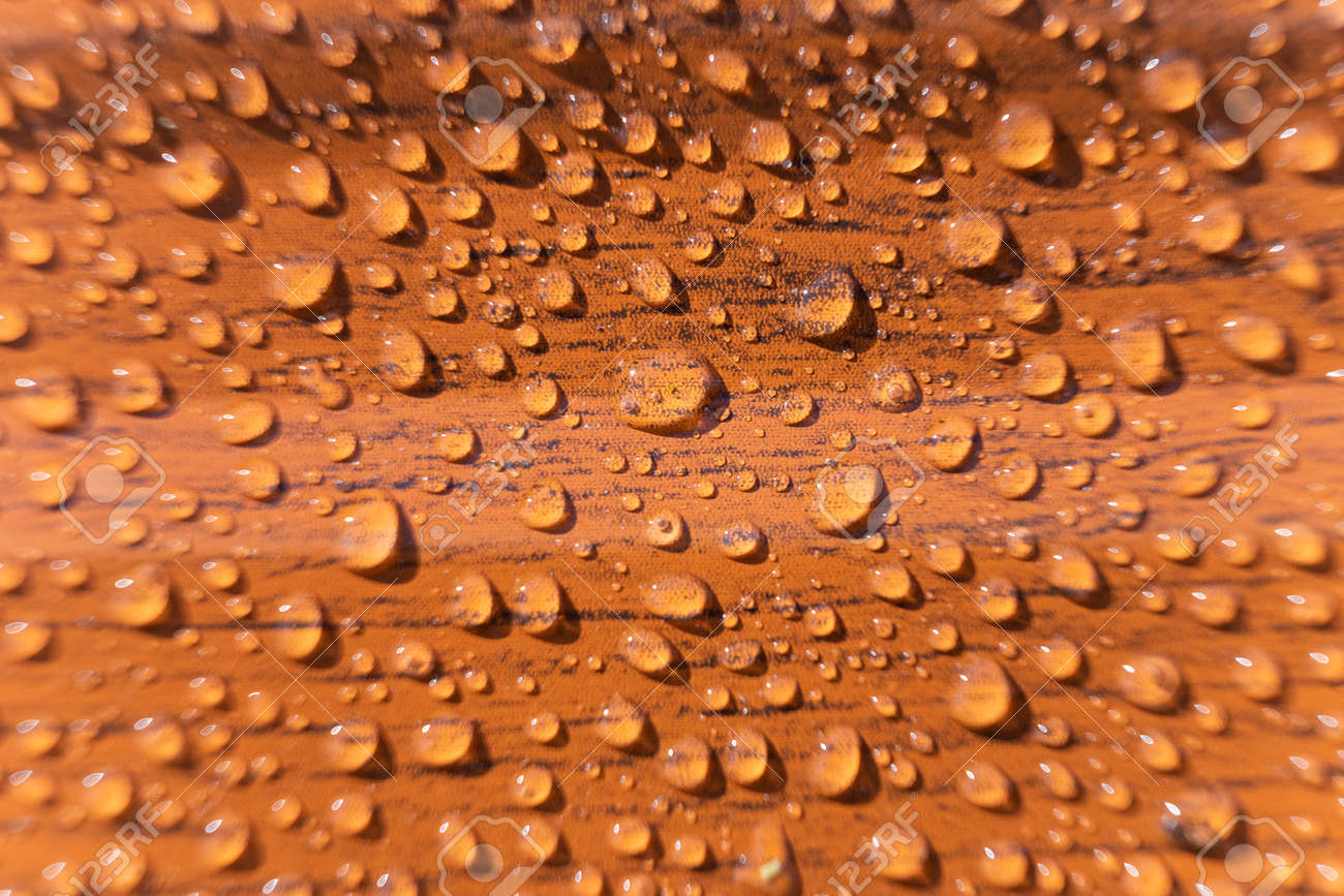 Raindrops on the metal profile sheet. Brown profiled metal sheet with dew drops. - 170713339