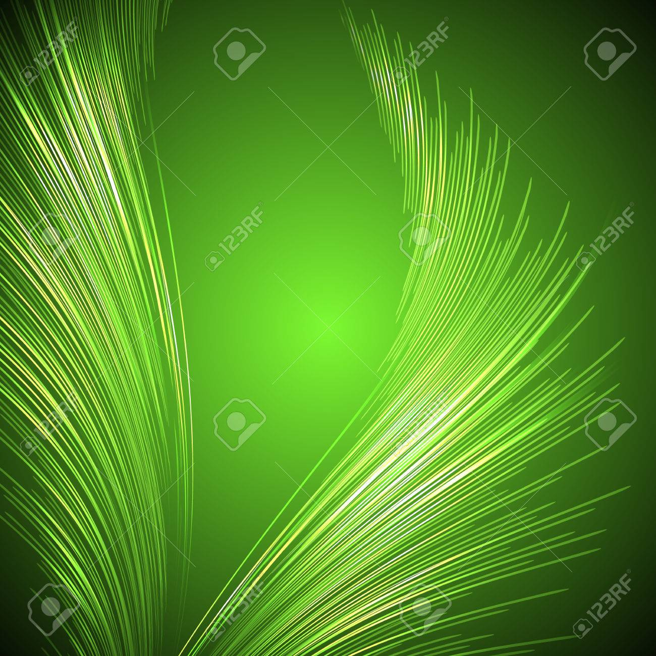 Palm leaves and vector illustration - 51859143