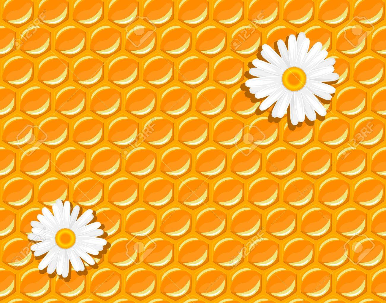 seamless background - honeycomb and flowers of chamomile illustration Stock Vector - 13883356