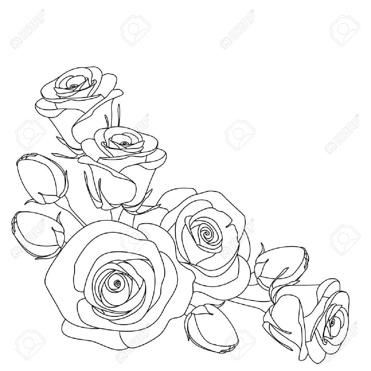 Rosas Ilustración En Blanco Y Negro Sobre Fondo Blanco Colorear Ilustración Vectorial