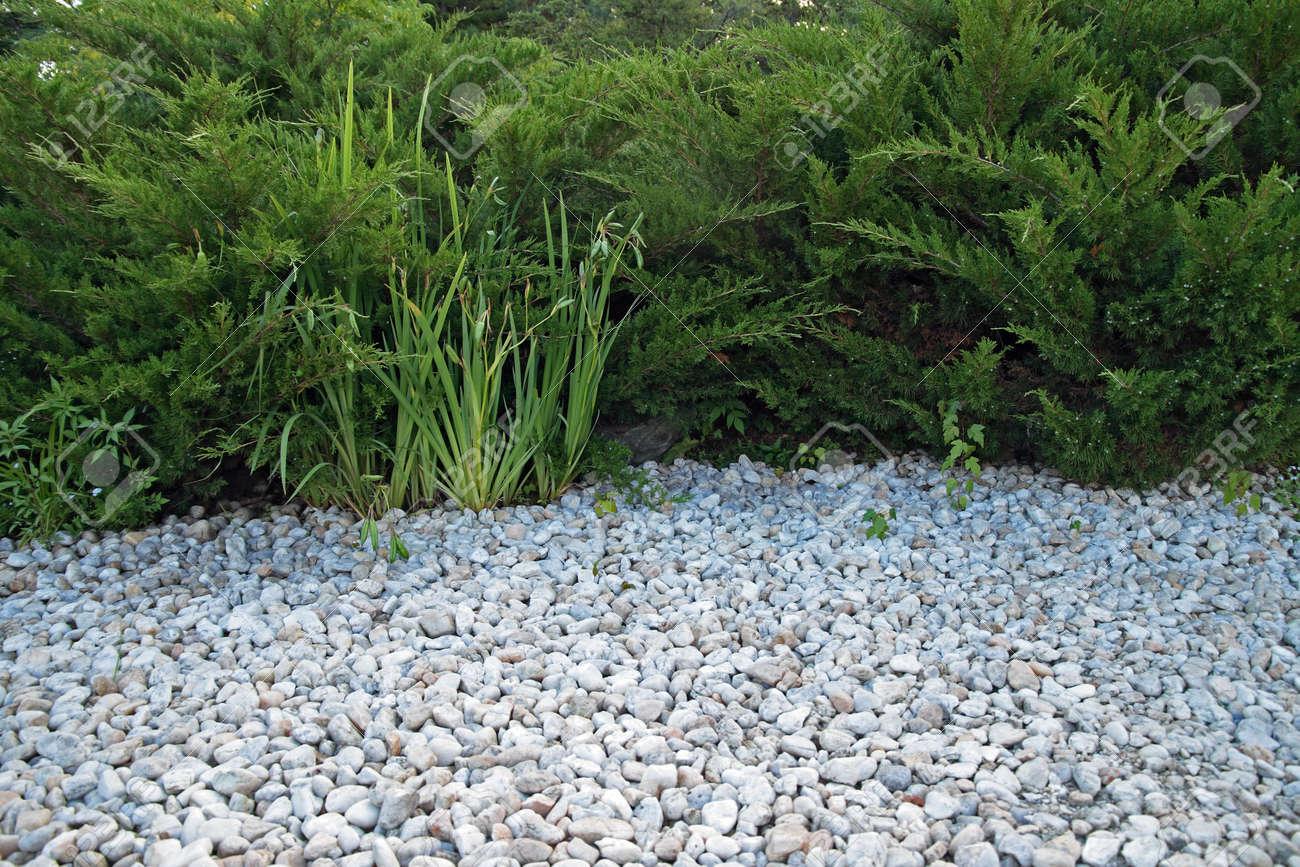 Giardini Moderni Con Sassi : Sassi per giardino roccioso mekan info sassi per giardino