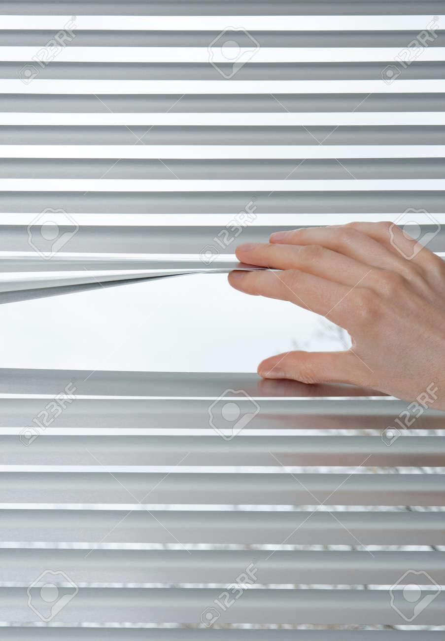 Female hand opening metallic venetian blinds for peeking Stock Photo - 12538785