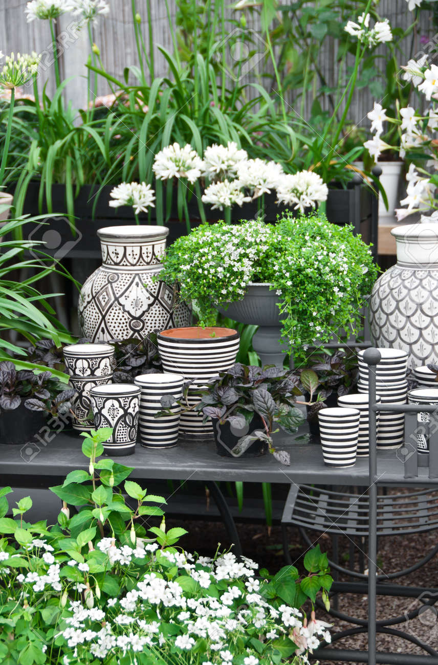 Beautiful arrangement of flowers, plants and black and white ceramics Stock Photo - 15141400