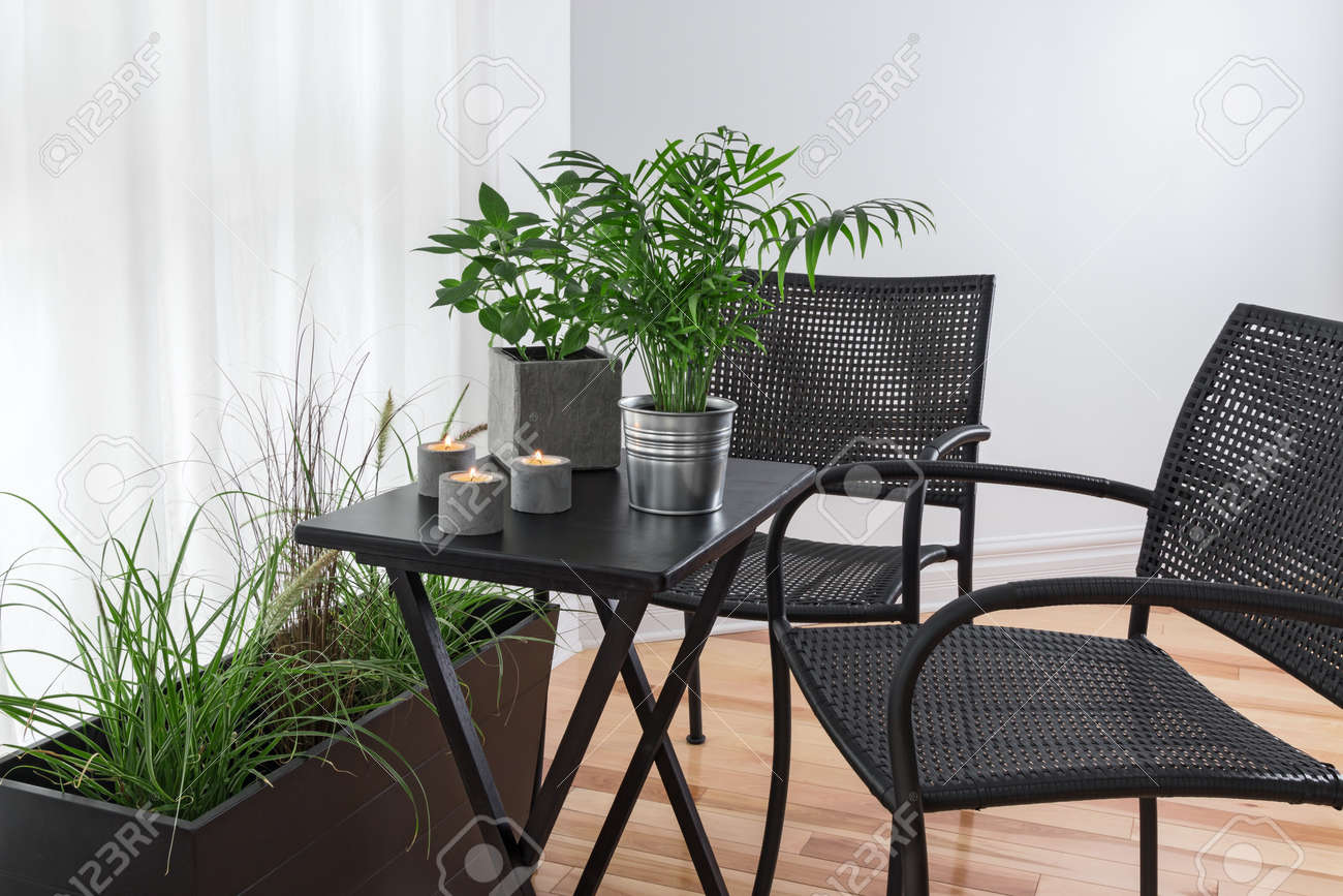 Room with lots of green plants and simple furniture. Stock Photo - 23011975