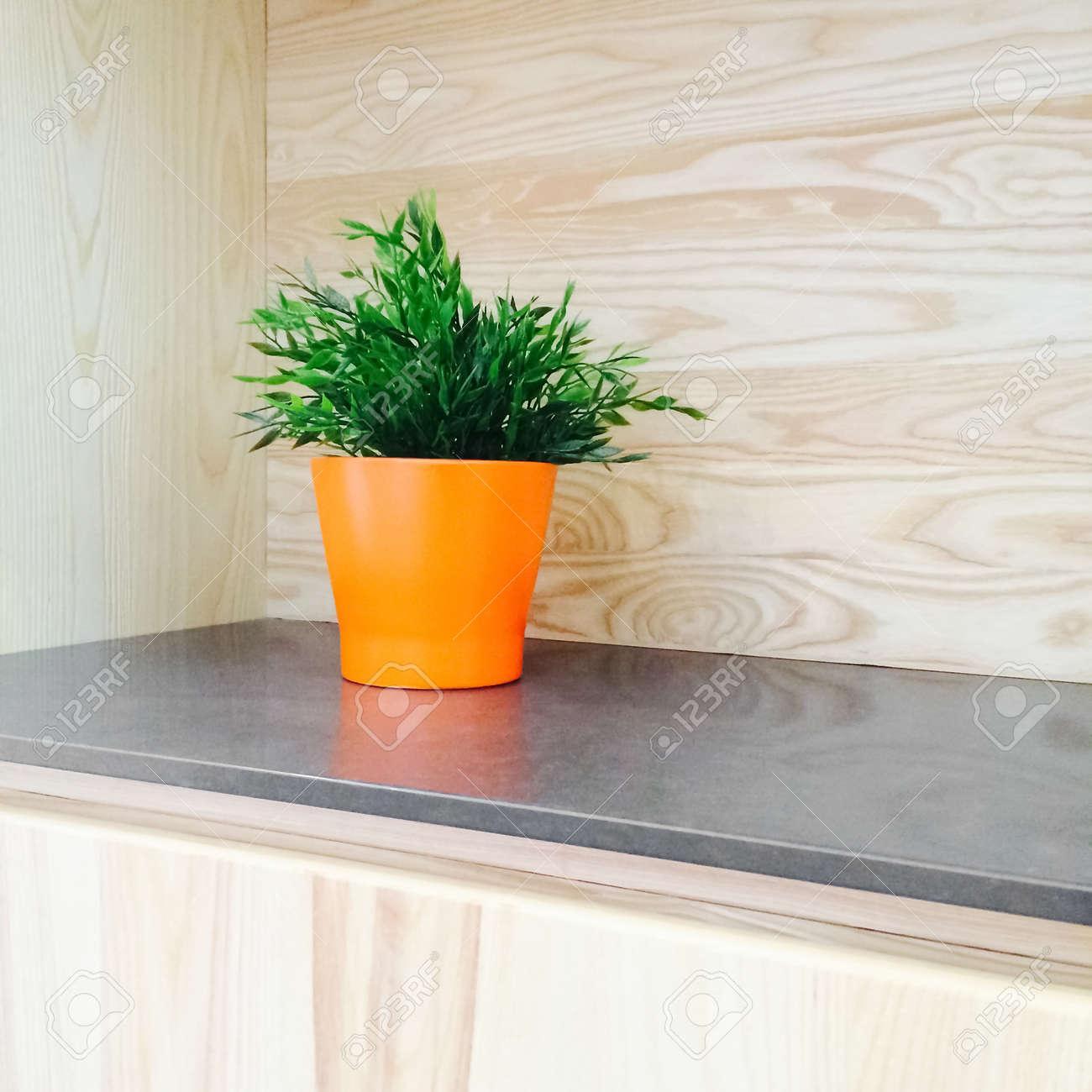 Plante Verte Dans Un Pot D\'orange Décoration Cuisine En Bois ...