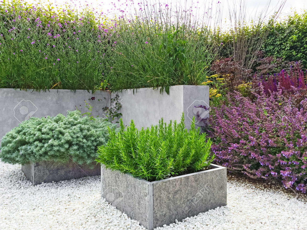 Beau jardin avec des plantes en fleurs, le béton et les détails de pierre.  Design contemporain.