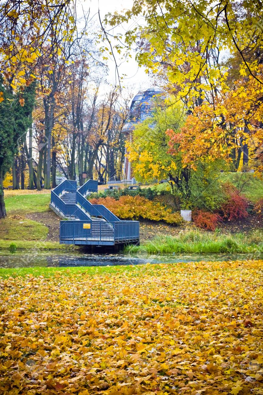 Beautiful autumnal park with colorful maple leaves Stock Photo - 18031915
