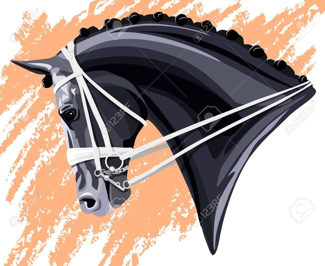 Black Dressage Horse head on pink background - 61593827