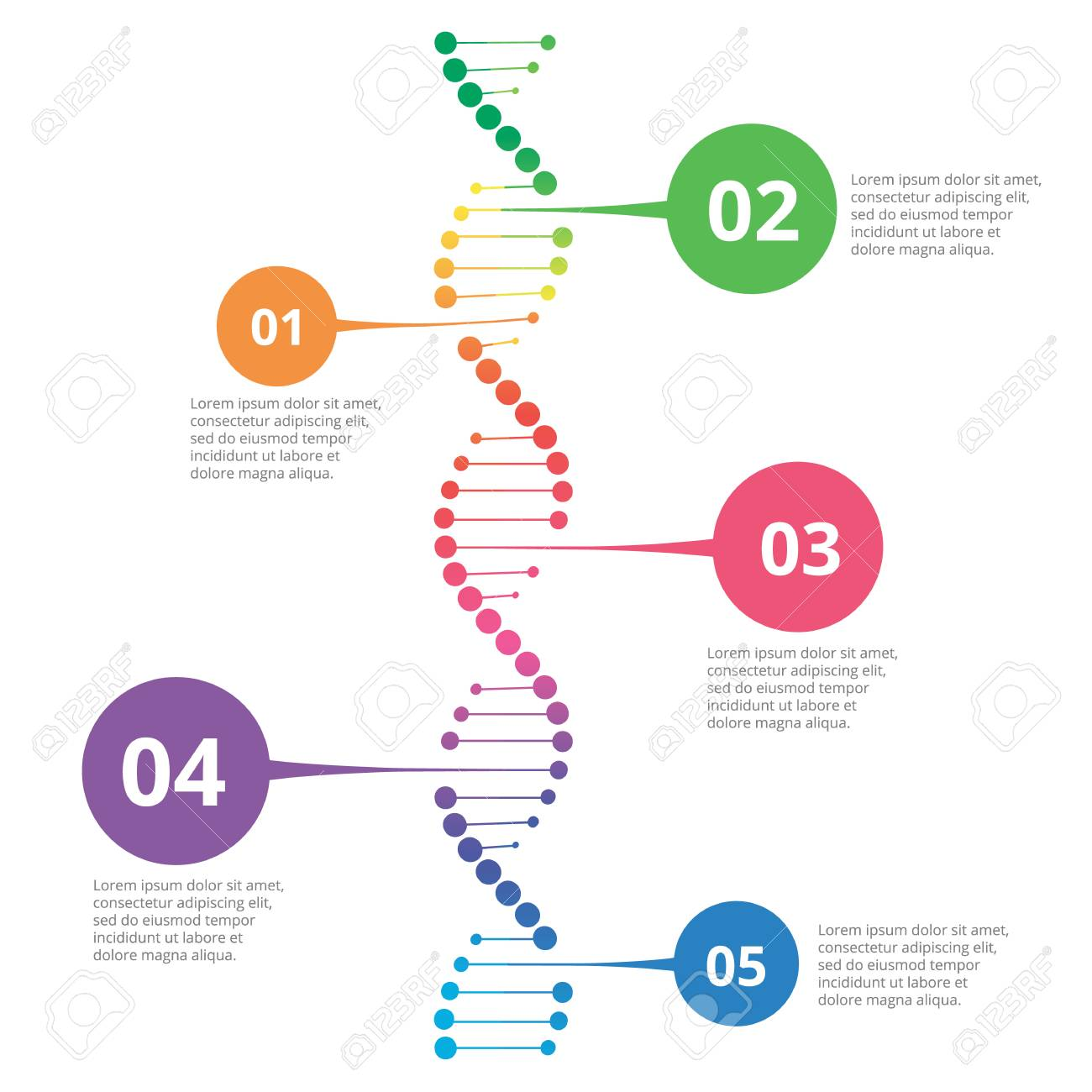 Abstract Infographic DNA, Can Be Used For Workflow Layout, Diagram ...