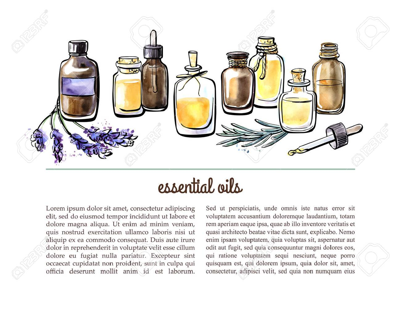 Vector illustration with essential oil bottles, aromatic plants and flowers. Hand drawn watercolor objects on white background with place for text. Aromatherapy card, flier or leaflet design. - 62226921