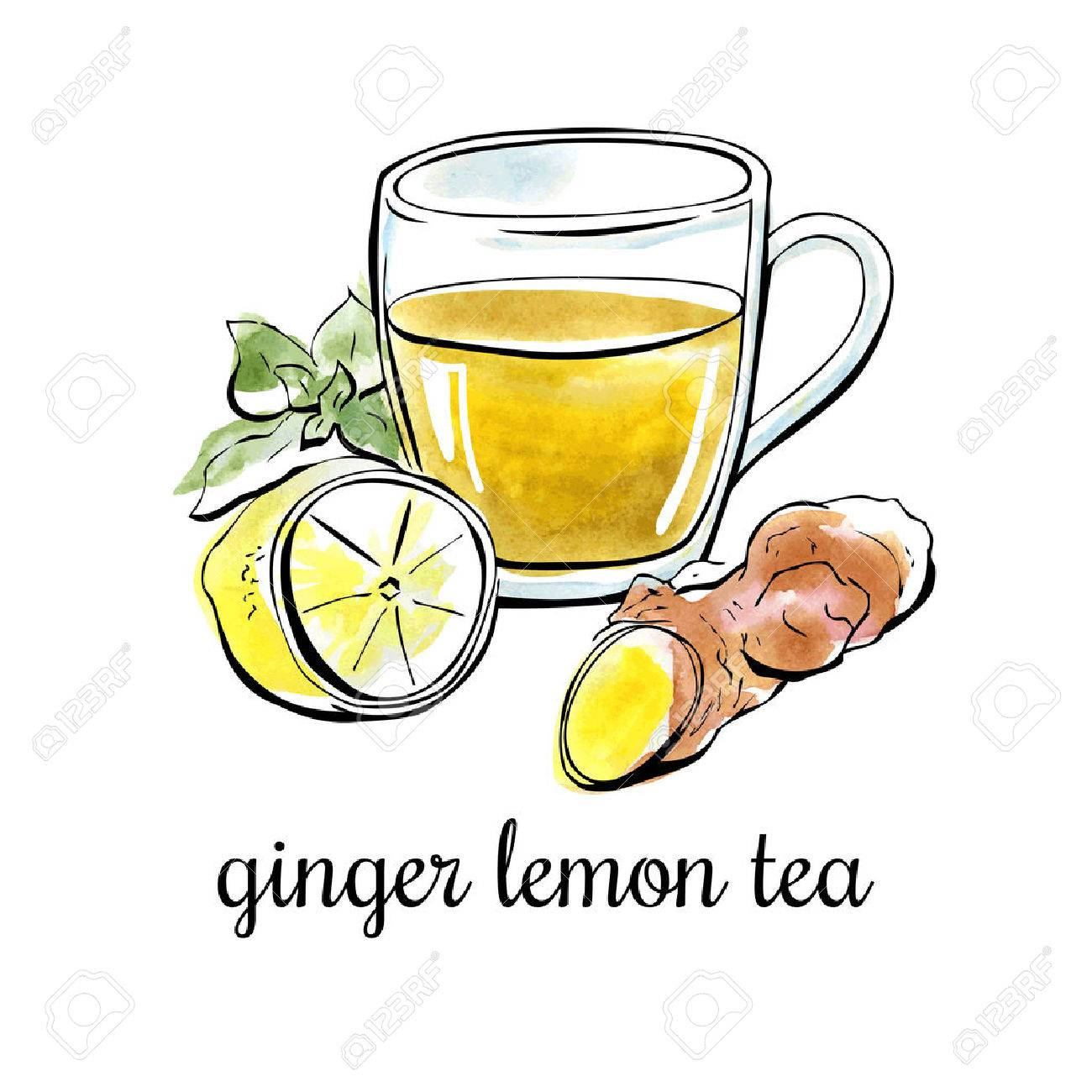 Vector hand drawn illustration with ginger lemon tea. Black outline and bright watercolor stains on the background. Isolated on white. - 62226935