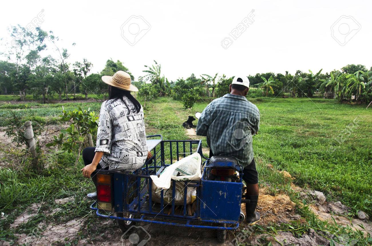 Old Man Riding Motorcycle And Daughter Sit At Cart Go Back Home After Plant  Tree And