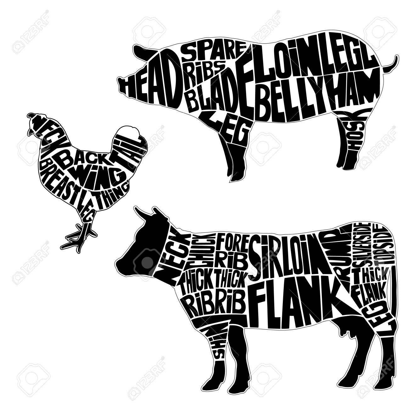 Diagramme Für Metzgerei .. Die Silhouette Des Tieres, Rind, Schwein ...