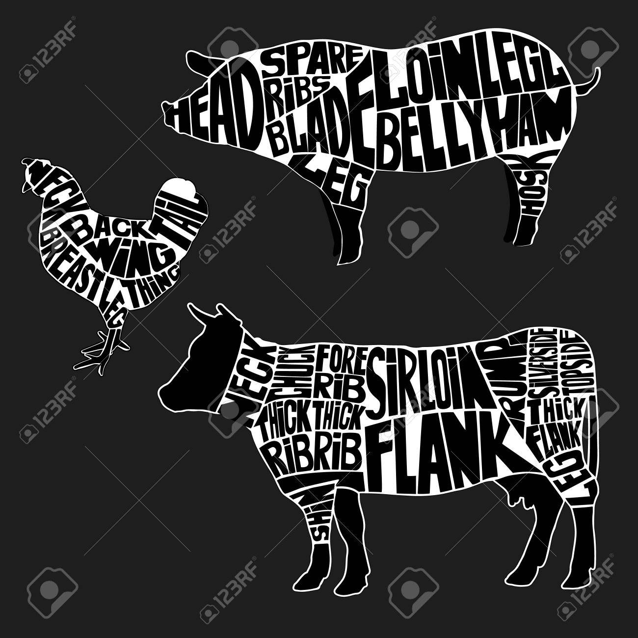 Diagrams For Butcher Shop The Silhouette Of Animal Beef Pig Diagram Pork And