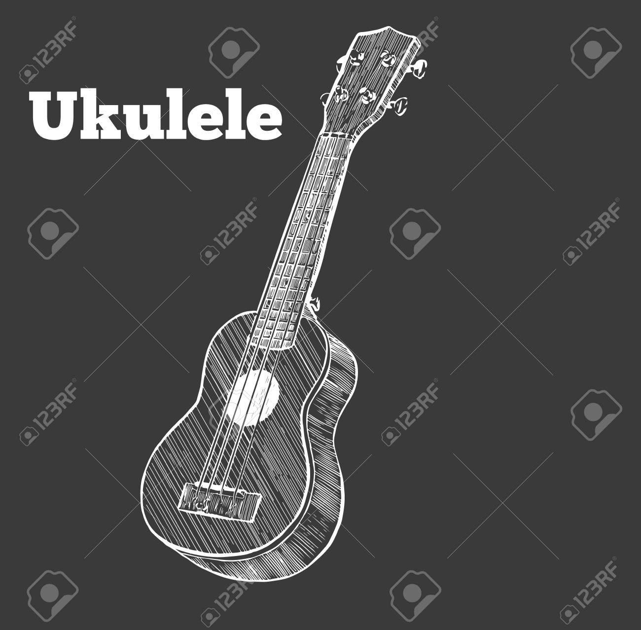 Vector illustration . ukulele. - 69423551