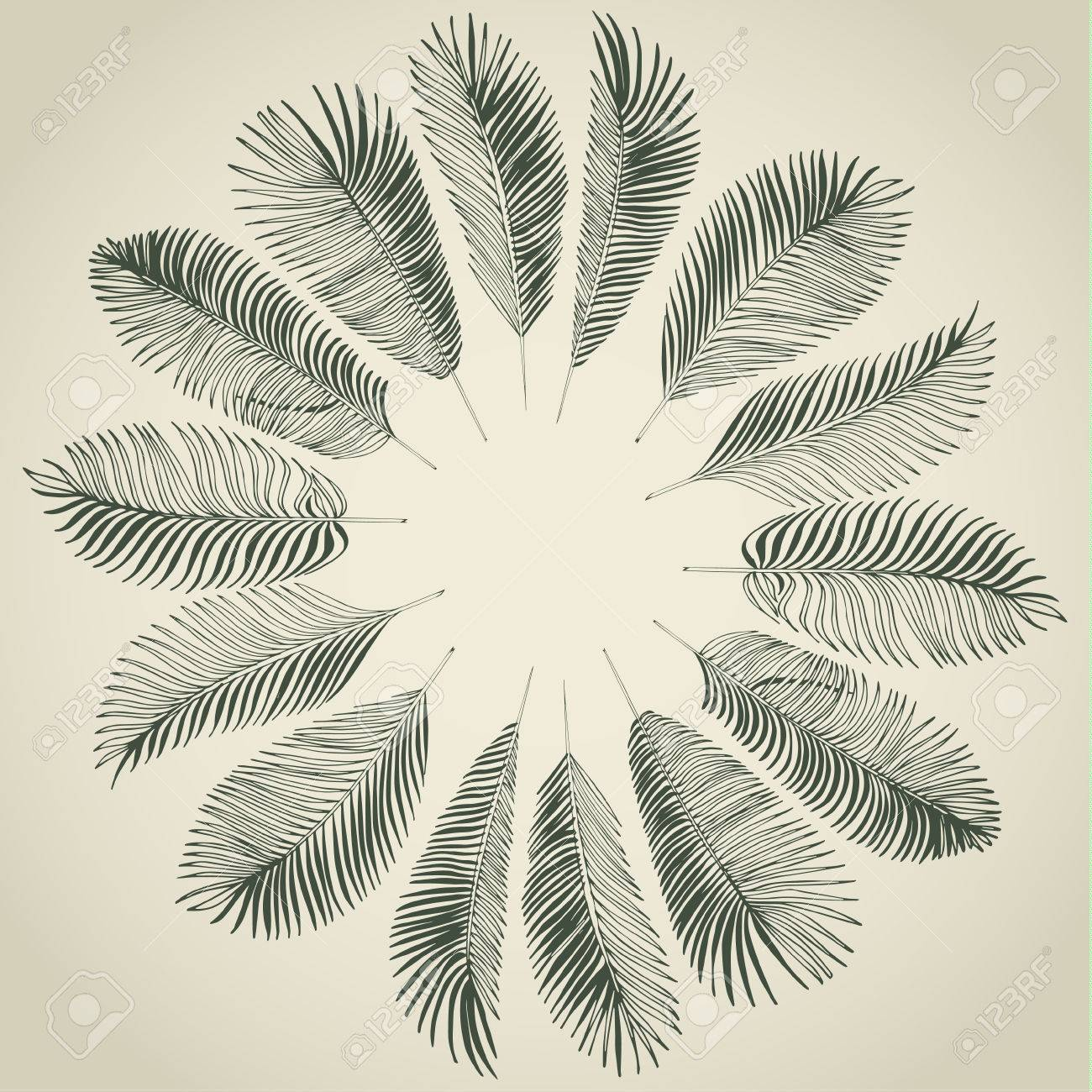 Hand drawn gray background of tropical palm leaves. Vector background. - 40394010