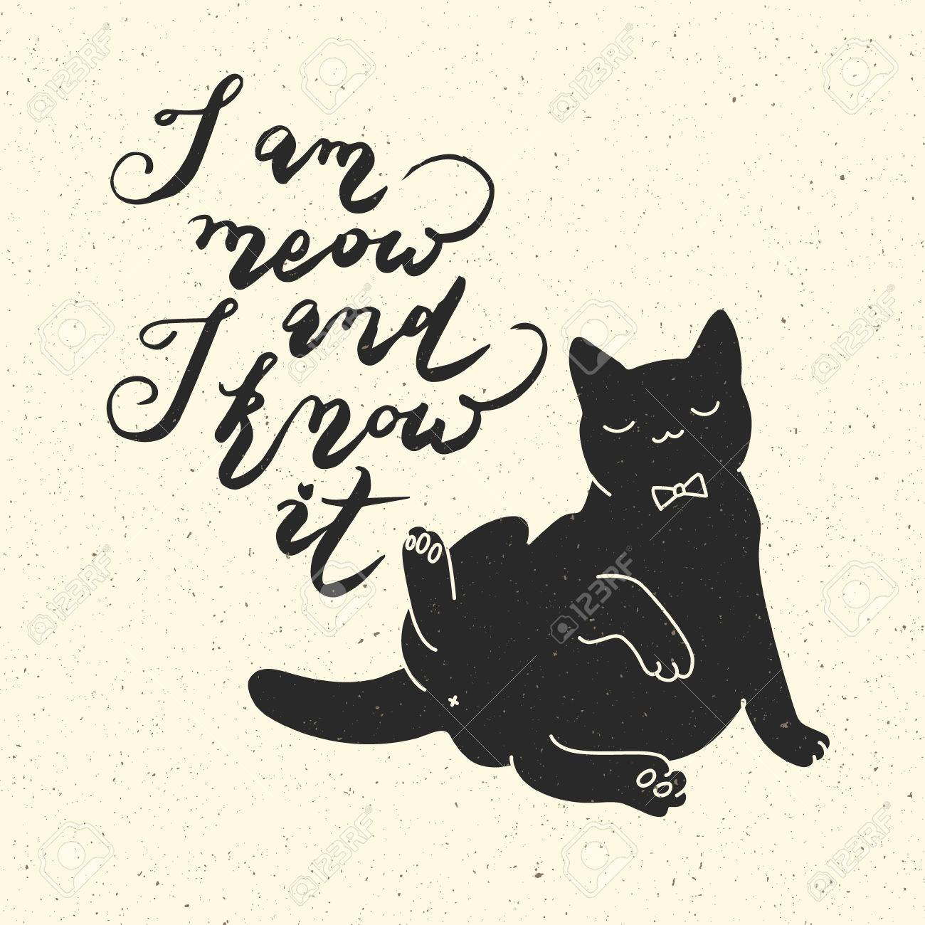 Cat Stock Quote I Am Meow And I Know Itcat Quotetrendy Hipster Hand Drawn
