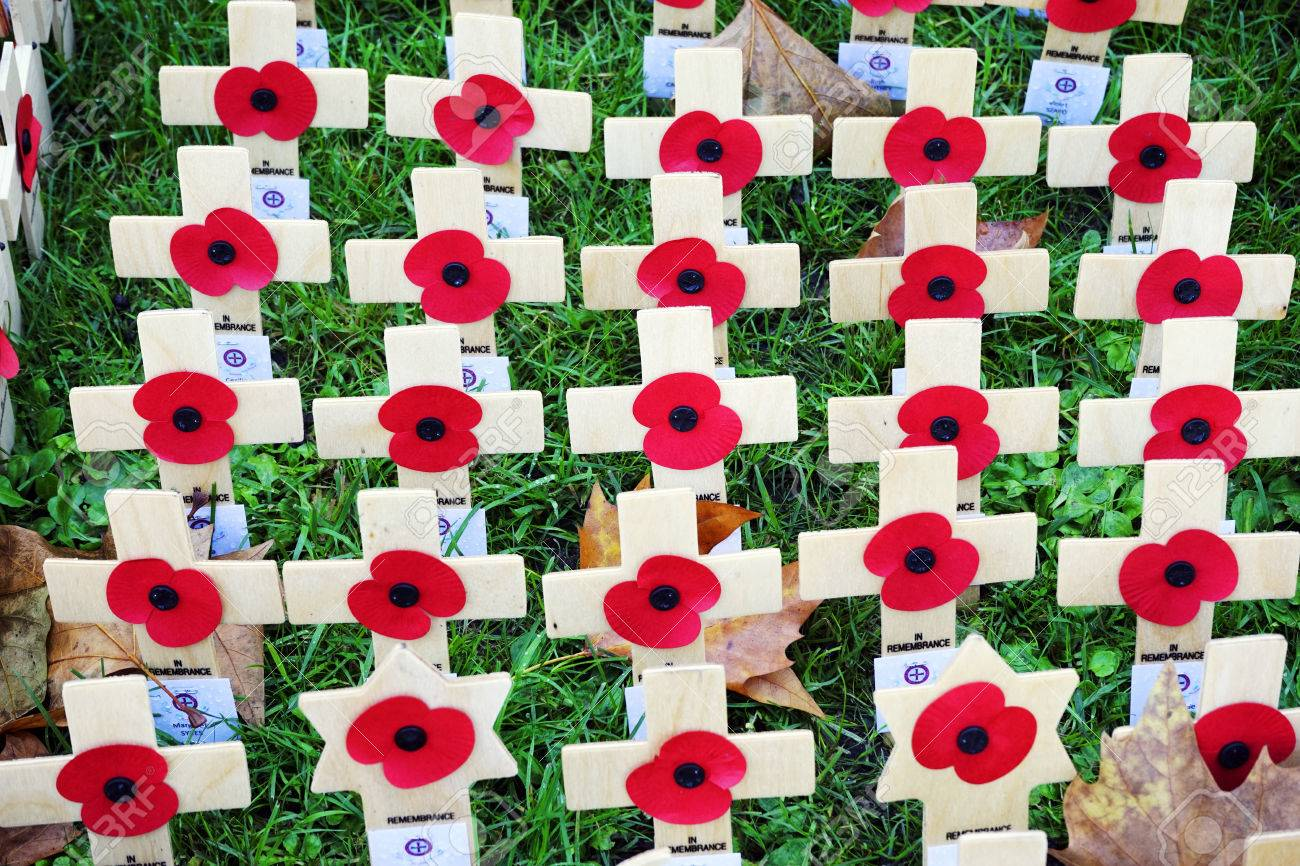 remembrance day display wooden crosses with poppies westminster